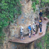 Canopy Cliff Bridge