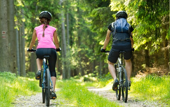 Cycling the Trail