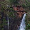 Canopy Waterfall